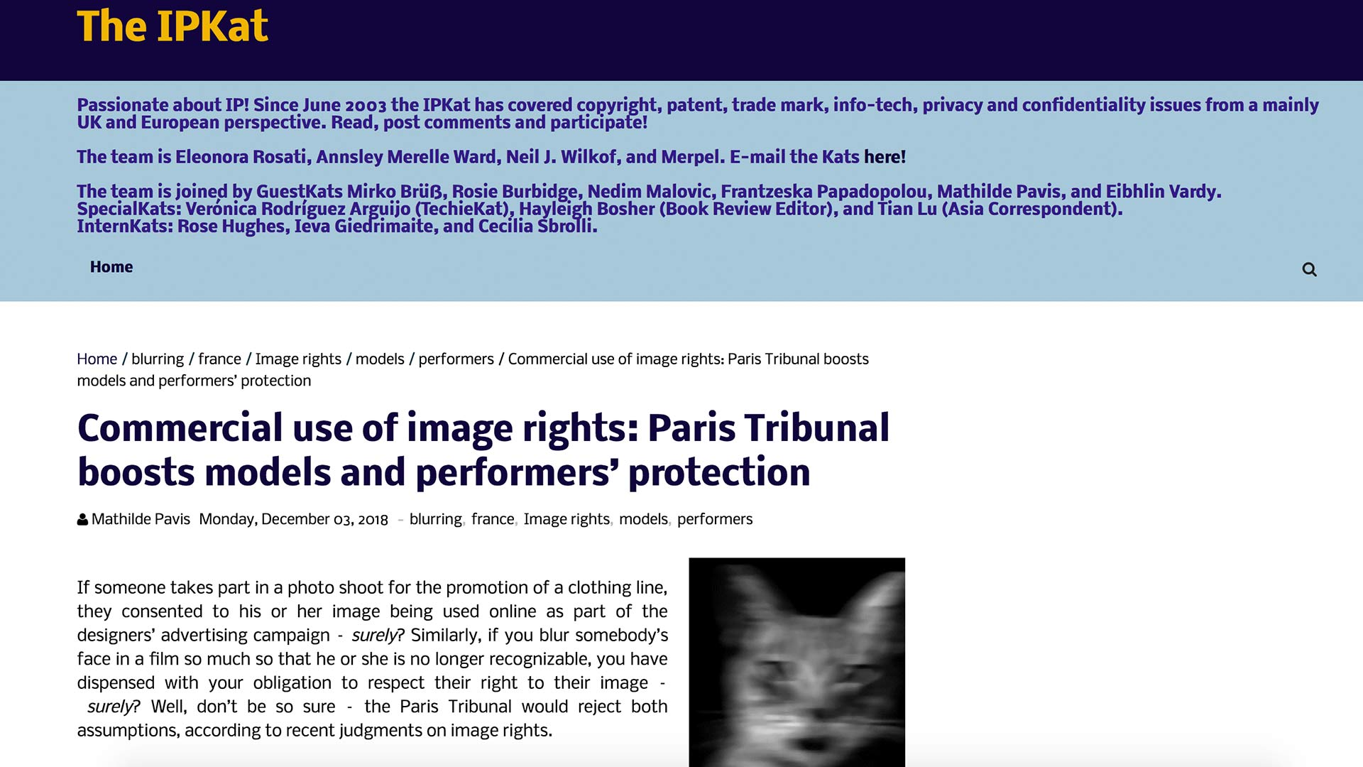 Fairness Rocks News Commercial use of image rights: Paris Tribunal boosts models and performers' protection